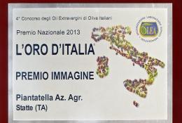 Premio Immagine